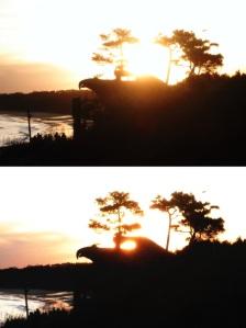 El Águila y el sol